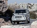 奔驰新G级-换搭小排量引擎 售价降低50万