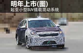 起亚 文章 广州视窗 汽车频道