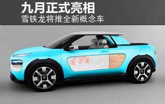 雪铁龙将推全新概念车 九月正式亮相-图
